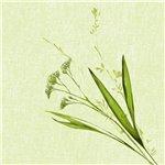 Obrúsok z materiálu Dunisoft cz kolekcie pestrých sezónnych a celoročných vzorov Sú vyrobené s inovatívnym postupom s použitím vzduchu namiesto vody.Sú kompostovateľné. Počet kusov v balení: 60