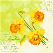 Ubrousek 33x33 cm 3 vrstvý SPRING FLOWER