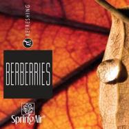 Náplň do osviežovača - SpringAir Berberries