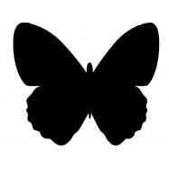 Popisovacia tabuľa Securit Silhouette MOTÝĽ, vr. popisovača a upevňovacej pásky na stenu - čierna
