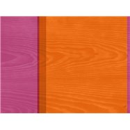 K-Prostírka 30x40cm papír BRAZIL STR.