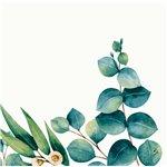 Obrúsok z materiálu Dunisoft z kolekcie pestrých sezónnych a celoročných vzorov Sú vyrobené s inovatívnym postupom s použitím vzduchu namiesto vody.Sú kompostovateľné. Počet kusov v balení: 60